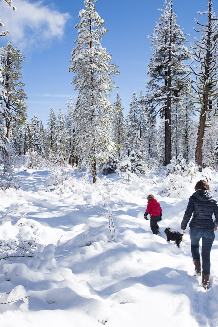 Lake-Tahoe-Snow_Ashley-Muir_Hither-and-Thither-8