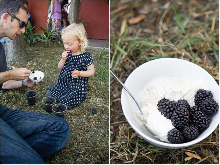 Blackberries at Yolo Press 3