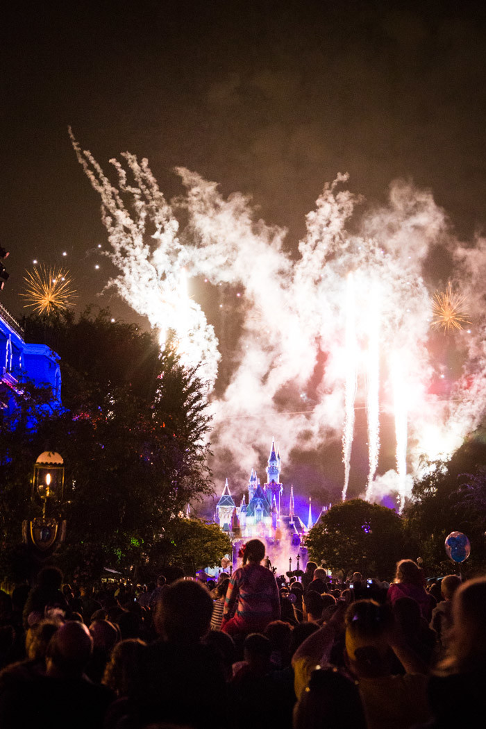 Disneyland_Hither-and-Thither-1-3