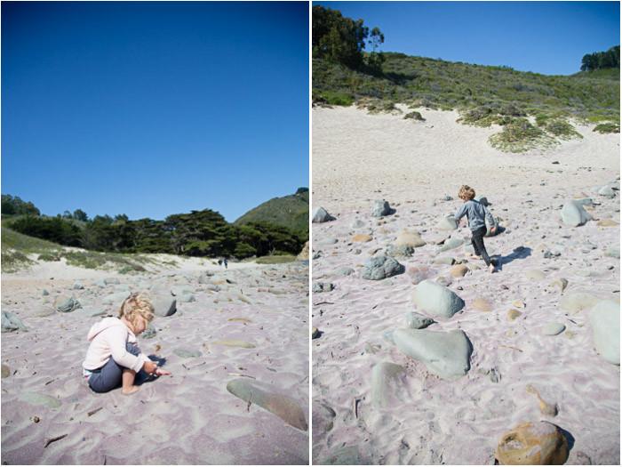 Big Sur Beach Purple Sand
