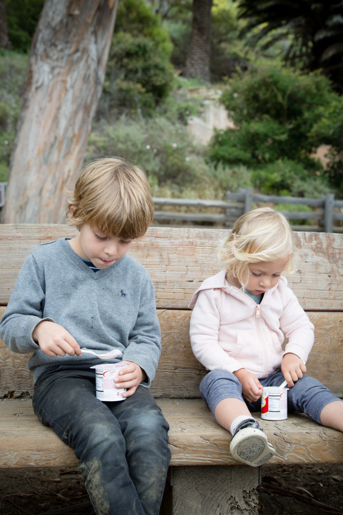 Big-Sur-Travelogue-with-kids_Hither-and-Thither-18