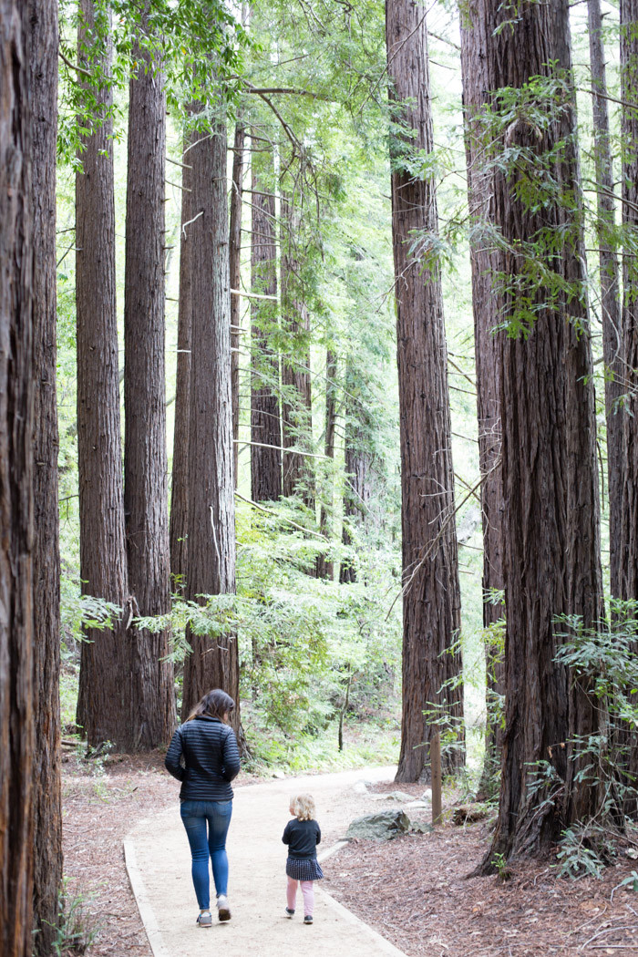 Big-Sur-Travelogue-with-kids_Hither-and-Thither-44