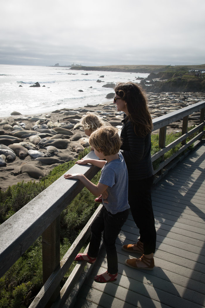 Big-Sur-Travelogue-with-kids_Hither-and-Thither-5