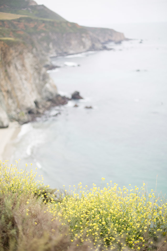 Big-Sur-Travelogue-with-kids_Hither-and-Thither-52