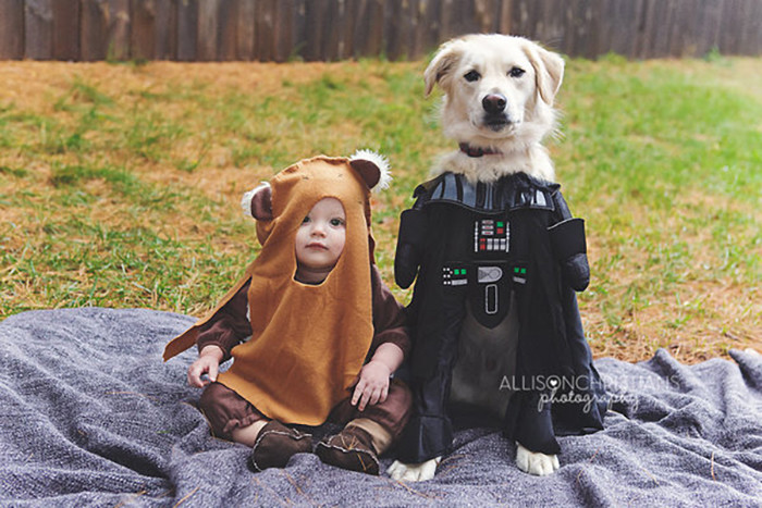 hither-thither-halloween-ewok-darth-vader