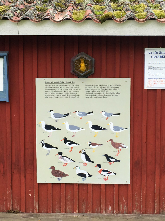 Sweden West Coast-Hither-and-Thither-28