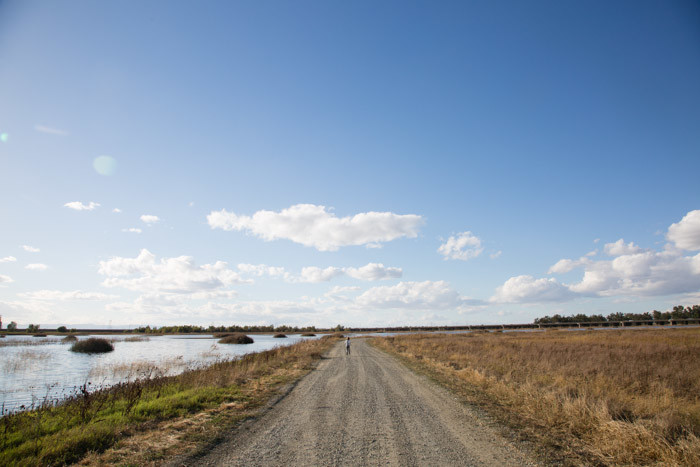 yolo-bypass-wildlife-area-hither-and-thither-3