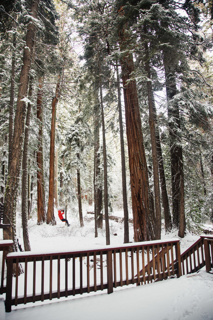 thanksgiving-tahoe-hither-and-thither-1-2
