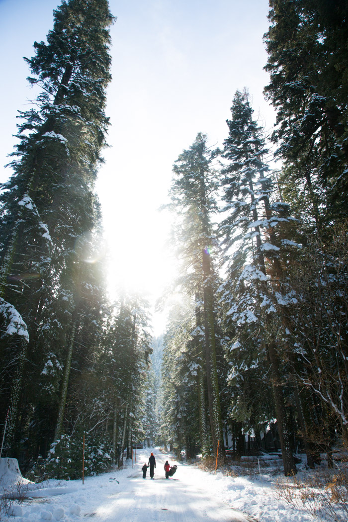 thanksgiving-tahoe-hither-and-thither-8