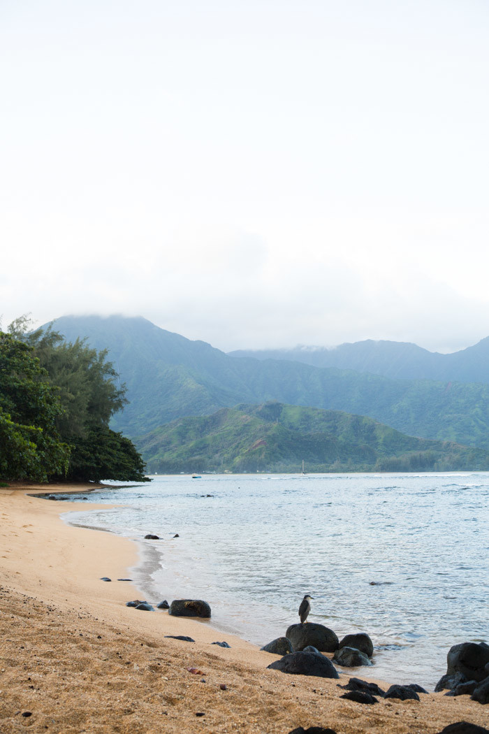 kauai-travelogue-hither-and-thither-85