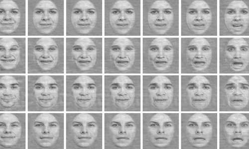 Adolphs Research - Facial Expressions