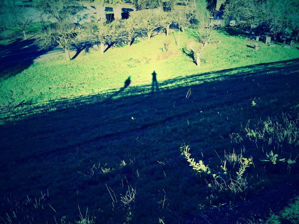 ShadowsOfTwoMen-Pixrly.com