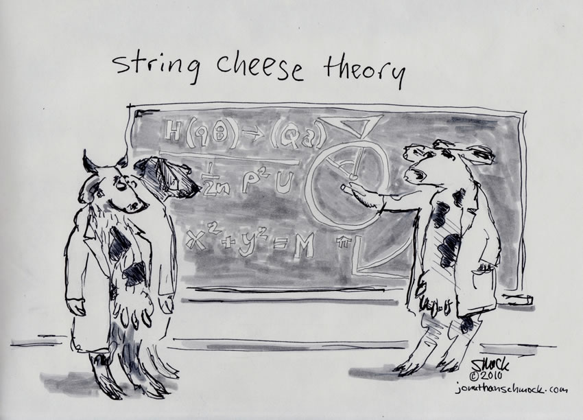 String Cheese Theory