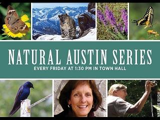 Natural austin series