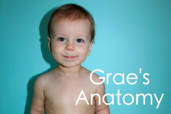Grae s Anatomy