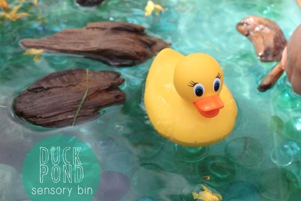 Duck Pond Sensory Bin | Mama Papa Bubba