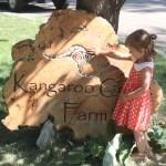 A Vist to Kangaroo Creek Farm
