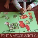 Fruit & Veggie Sorting {Using Flyer Clippings}