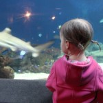 A Special Day at the Aquarium