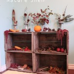 Autumn Nature Shelf