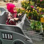 iPhoneography // Mini Gardener