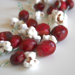 Cranberry Popcorn Garland for the Birds