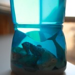 Ocean in a Bottle {& an ocean-themed play date}
