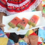 All-Fruit Watermelon Popsicles {& a popsicle picnic}