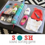 'S' and 'Sh' Sound Sorting Game