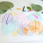 Leaf Rubbing Collages