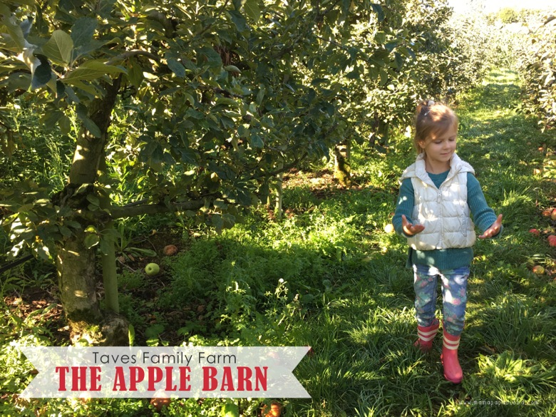 The Apple Barn | Mama Papa Bubba