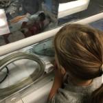 Gracen Meets Her Baby Brother