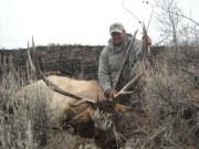Muzzleloader Elk