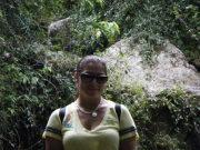 Rain Forest 4/10