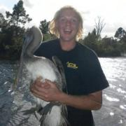 Caught a Pelican