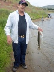 20 inch trout!