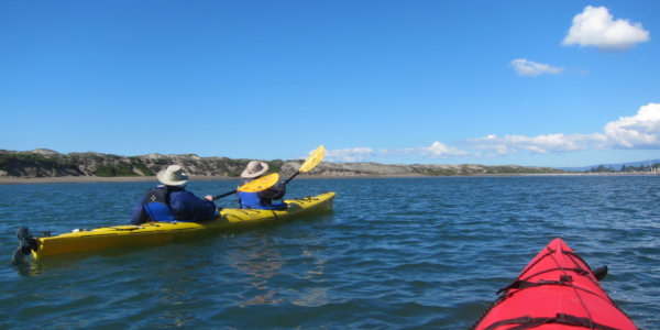 Kayaking in Elkhorn Slough