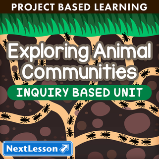 Exploring animal communities