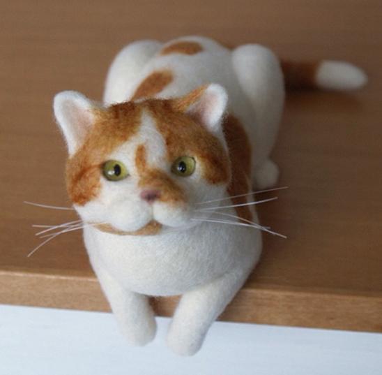 充沛的生命力,感觉猫咪们随时都要对我们发出 喵~叫声.