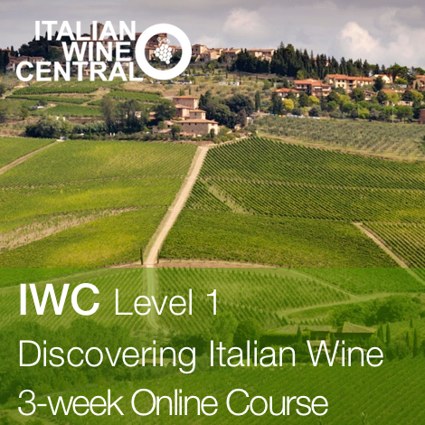 IWC Level 1 Discovering Italian Wine Online Class