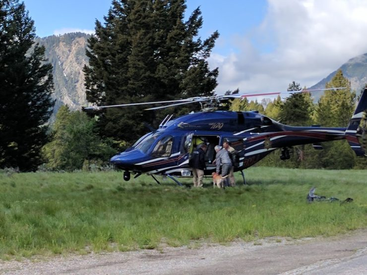 Dog and handler get into a blue helicopter in a field