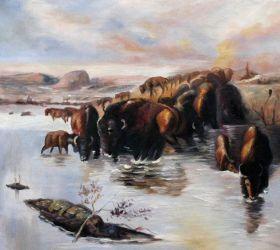 The Buffalo Herd - 24