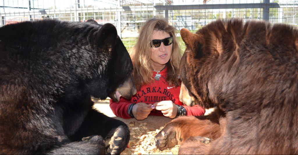 Outdoors, Things to Do, Family, Plano, Texas, Sharkarosa Wildlife Ranch, Pilot Point, Texas, Bear Den,