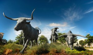 The Shops at Legacy, trails, sculpture, robert summers, longhorns