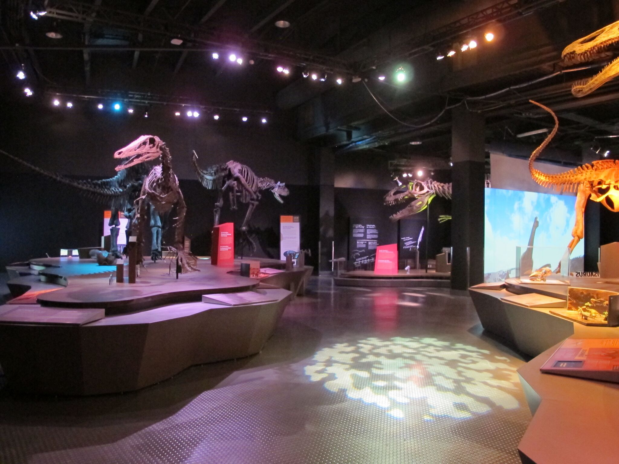 Perot Museum, Ultimate Dinosaurs, traveling exhibit, summer of the dinosaur