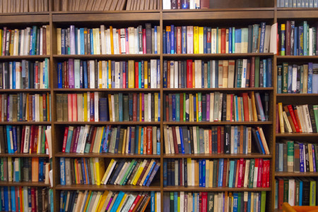 Photos of Books on a Shelf
