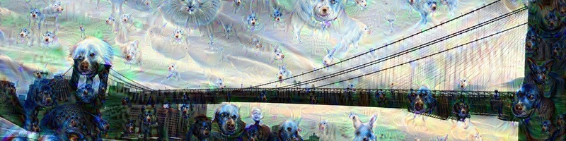 Cats dogs bridge layer 39