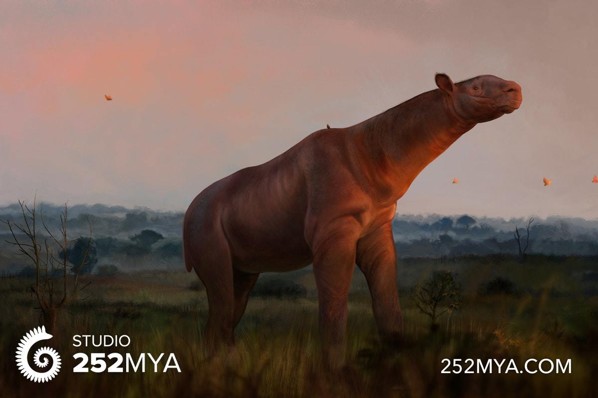 A life reconstruction of Paraceratherium
