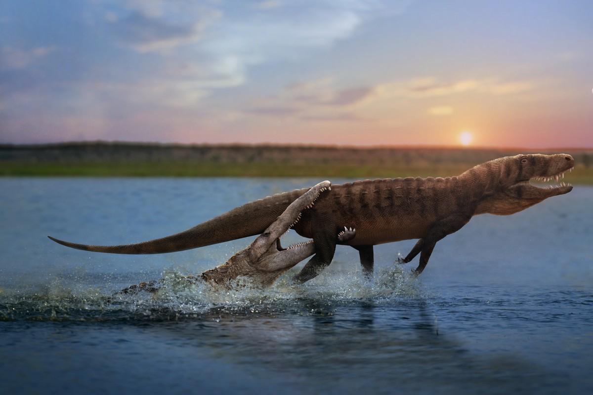 Phytosaur vs rauisuchian