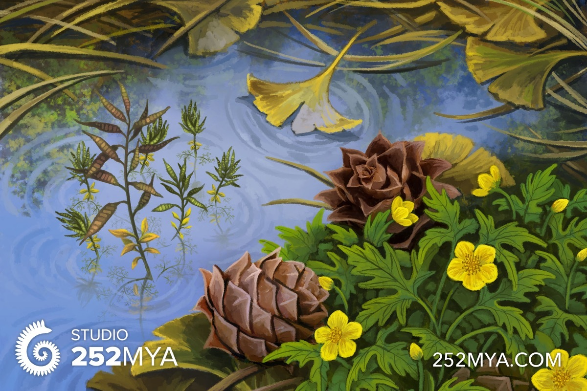 Seeds and flowers of Yixian Formation